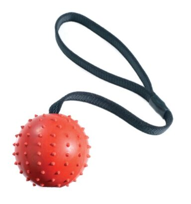 Pimple Ball & Rope
