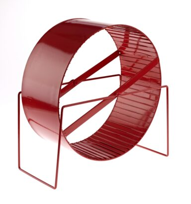 Large Exercise Wheel Red