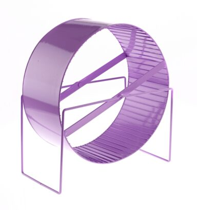 Large Exercise Wheel Purple
