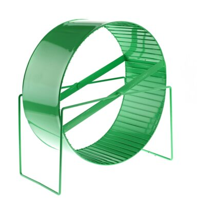 Large Exercise Wheel Green