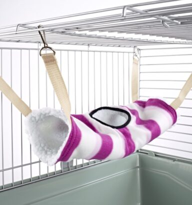 Tunnel Tube Rat Ferret Toy Pink Hoops
